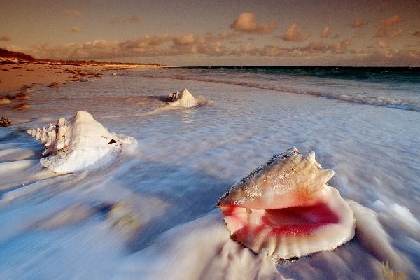 bahamas_ket_island
