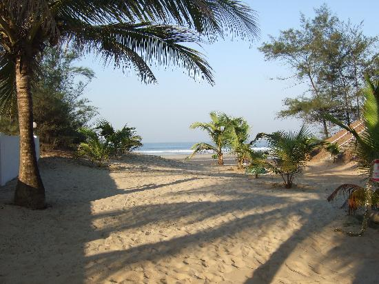 mandream_beach_goa